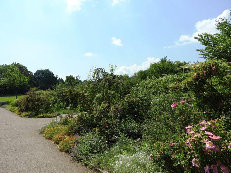 Egapark erfurt der garten thringens ausflugsziele t for Garten in erfurt