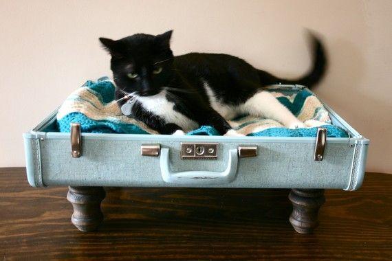 pet bedDogs Beds, Cat Beds, Suitcases Pets, Pets Beds, Suitcas Pets, Suitcas Beds, Upcycling Suitcas, Vintage Suitcas, Old Suitcas