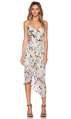 Zimmermann Fortune Burnout Dress in Floral