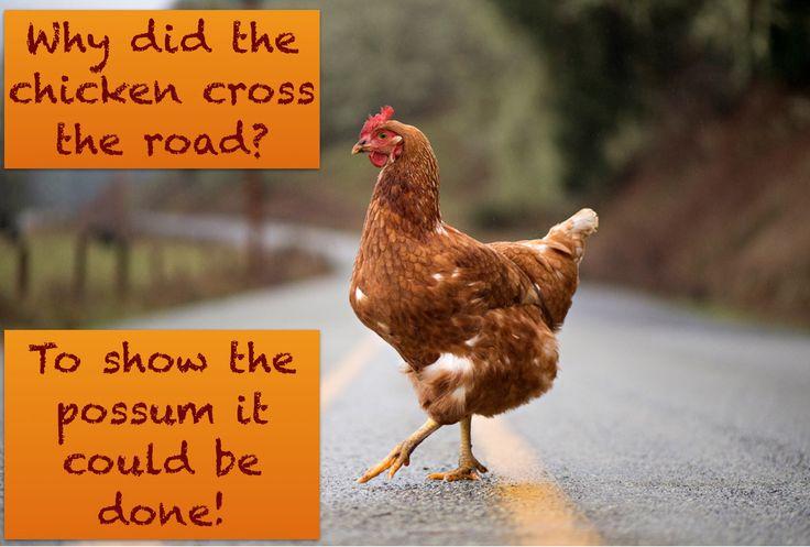 Funny Chicken Jokes: 48 Best Chicken Puns Images On Pinterest