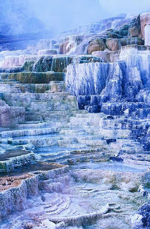 Minerva Terrace of Mammoth Hot Springs, Yellowstone National Park, Wyoming: