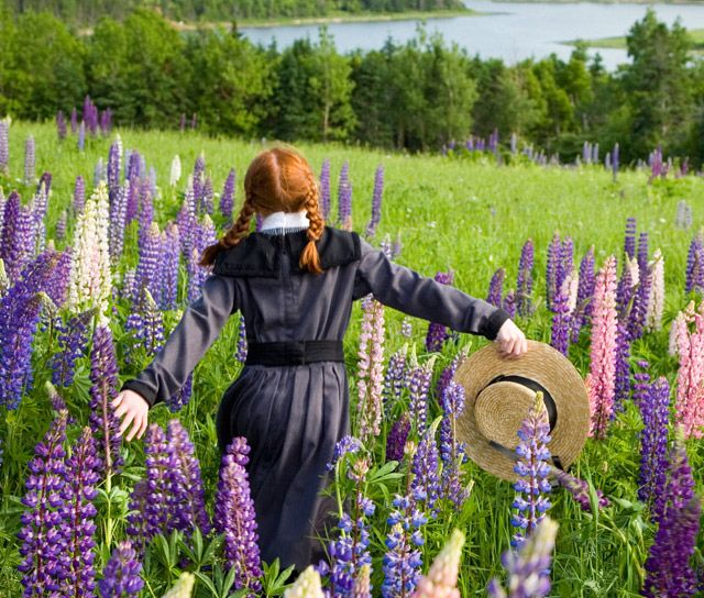 Anne of Green Gables Excursions, PEI