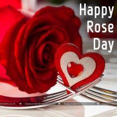 valentine rose msg