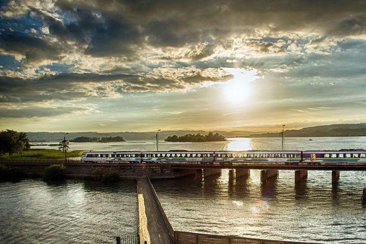 Voralpen-Express beim Sonnenuntergang am Zürichsee.
