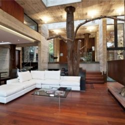 This is one gorgeous dwelling in the Guatemalan forest with trees growing through the interior!