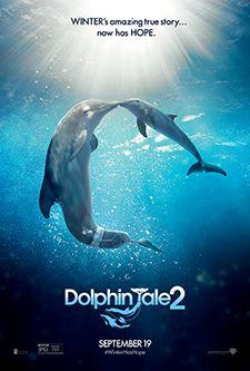 47 best Dolphin Tale 1 & 2 images on Pinterest | Marine aquarium ...