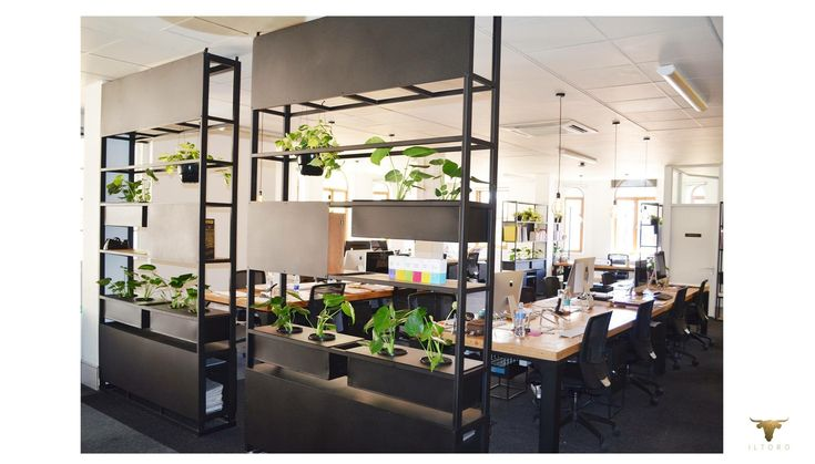 Office divider and plant stands timber and steel