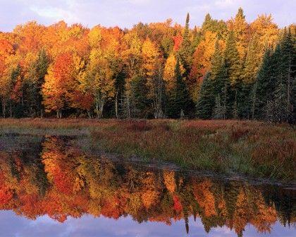 Minnesota Tourism in Autumn Splendor