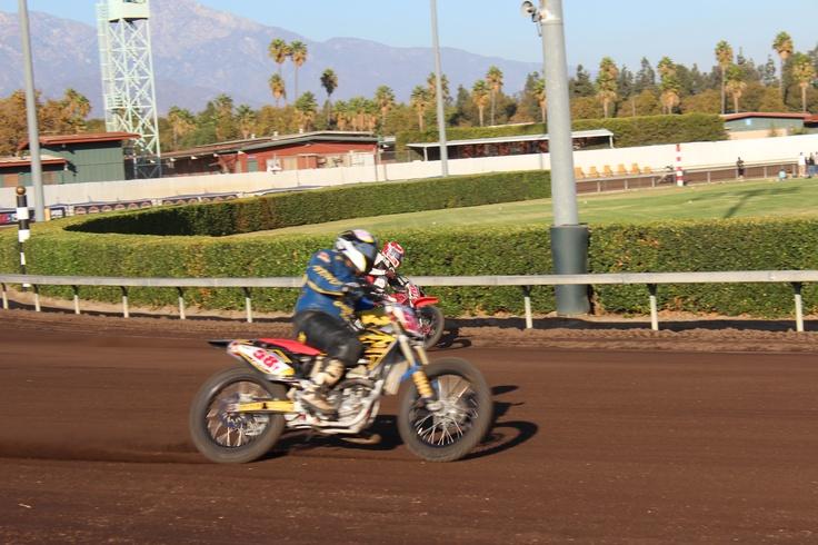 AMA Pomona Flat Track Finals