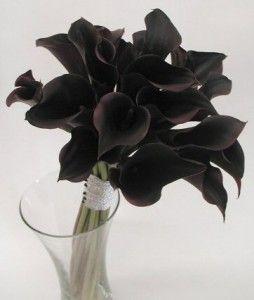 .: Idea, Calla Lilies, Bouquets, Blackcalla, Wedding Flowers, Black Flowers, Calla Lilly, Black Calla, Calla Lily