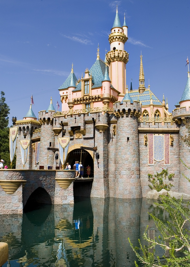 4% of all amateur photographs taken worldwide are done at Disneyland and Walt Disney World Parks.