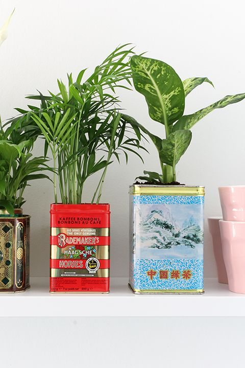 Urban Jungle Bloggers: Creative Plant Pots by @elskeleenstra | Pinterest: Natalia Escaño
