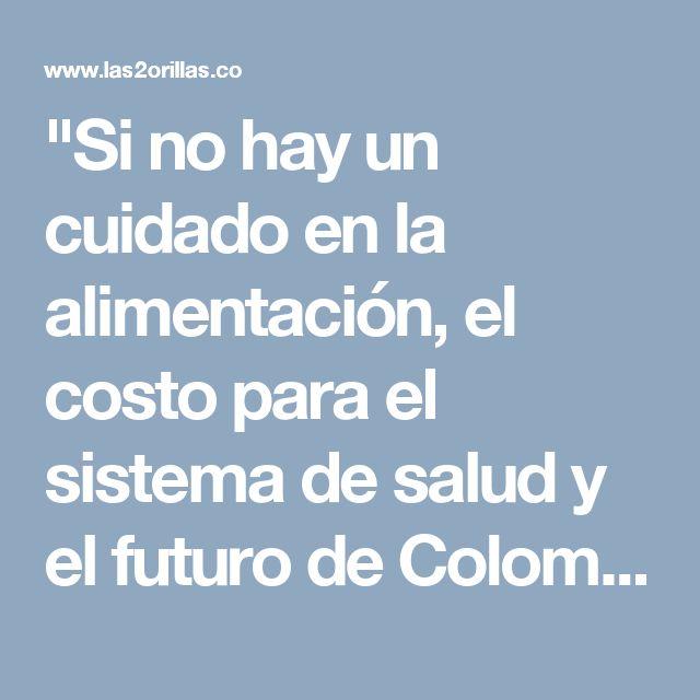 """""""Si no hay un cuidado en la alimentación, el costo para el sistema de salud y el futuro de Colombia será muy grande"""" - Las2orillas"""