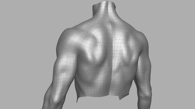 Muscles Deformation Test on Vimeo