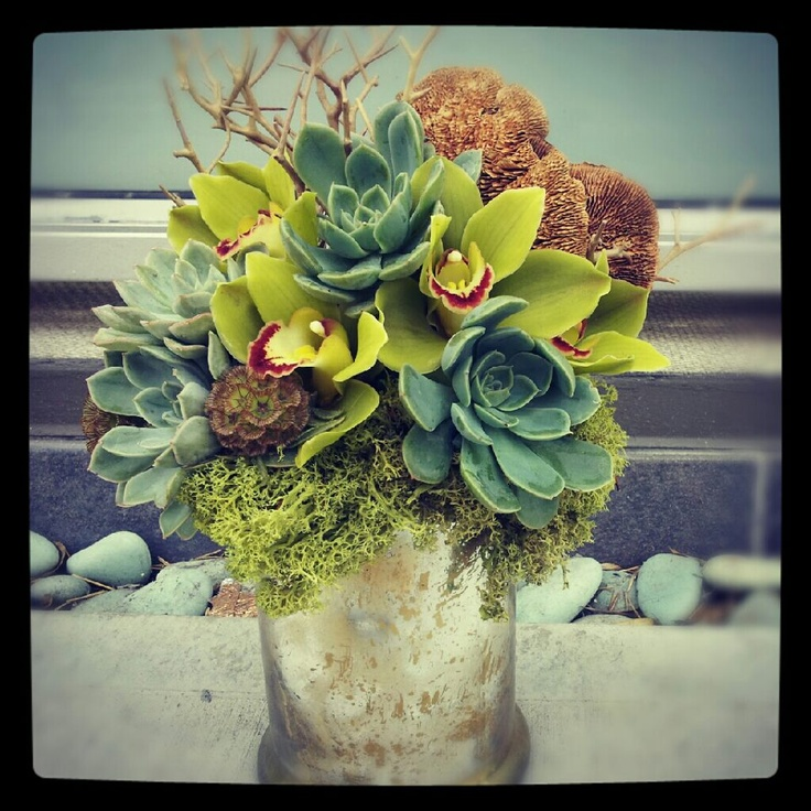 beautiful arrangement by Stems Floral Design!! need some succulents asap
