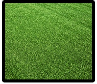 Lawn Turf Prices - Compare Quotes Between Companies and Save Today