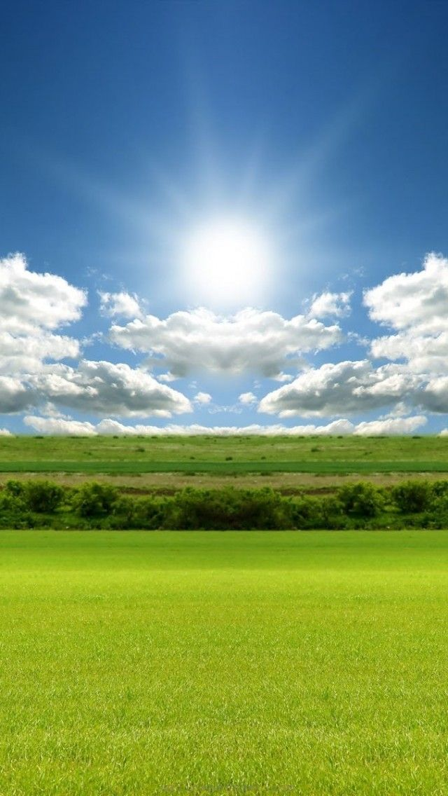 bright-day-sun <3<3<3