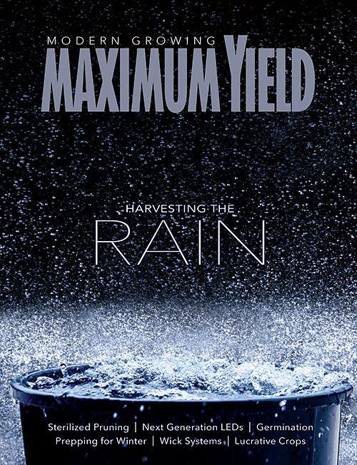 Harvesting the Rain: Maximum Yield November 2017