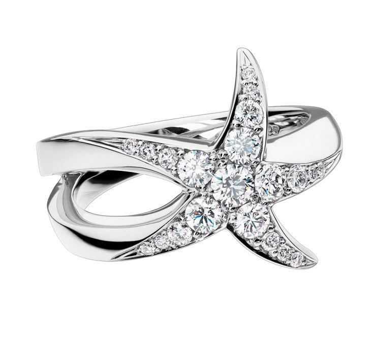 Beach Rocks Starfish Ring with Pavé Diamonds in White Gold / David Marshall London