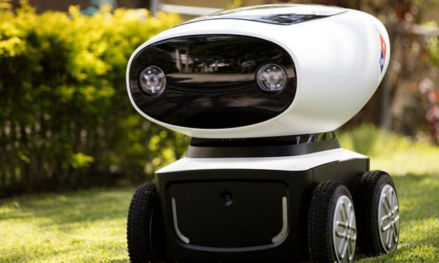 Domino's Reveals Pizza Delivery Robot