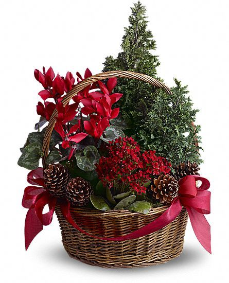 Images about christmas flowers and centerpiece on