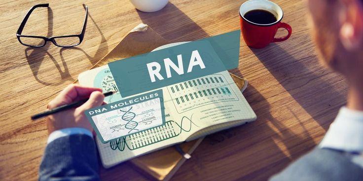 Πώς τα επίπεδα έκφρασης των miRNA επηρεάζουν ασθενείς με μεταβολικό σύνδρομο, καθώς ασθενείς με HIV;
