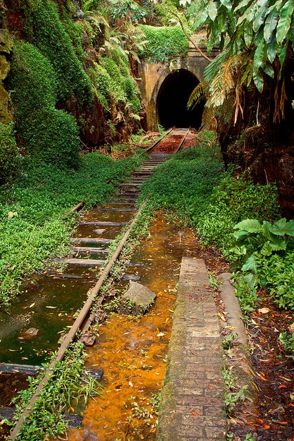 The old abandoned Helensburgh Station in New South Wales, Australia (by matt.jeffery).