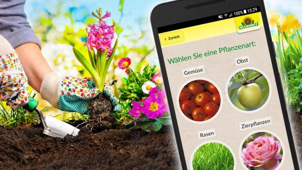 Die Besten Gratis Apps Fur Den Garten Mehr Gemuse Ernten Pflanzen Giftige Pflanzen Zierpflanzen