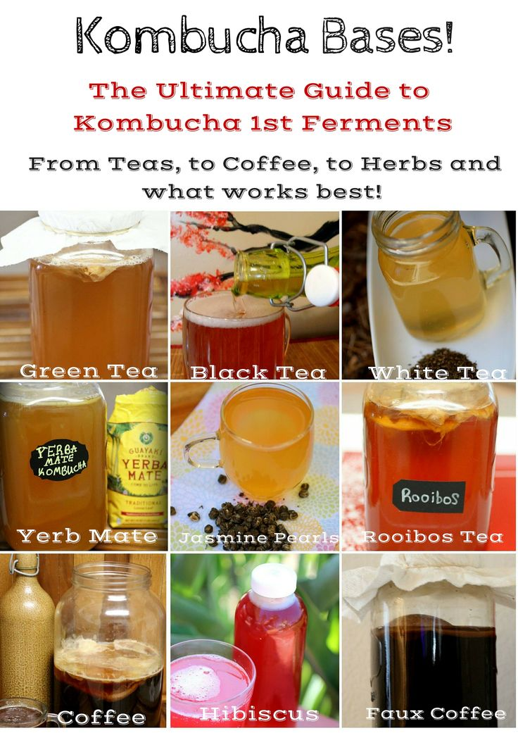 We've tested and tested these Kombucha ferments and these are the 9 best teas,coffees and more you can use during 1st ferment. Have you tried all 9? Green Tea Kombucha, Black Tea Kombucha, White Tea Kombucha, Yerba Mate Kombucha, Jasmine Pearl Kombucha Rooibos Kombucha , Coffee Kombucha, Hibiscus Kombucha , Faux Coffee Kombucha!   ~CulturedFoodLife
