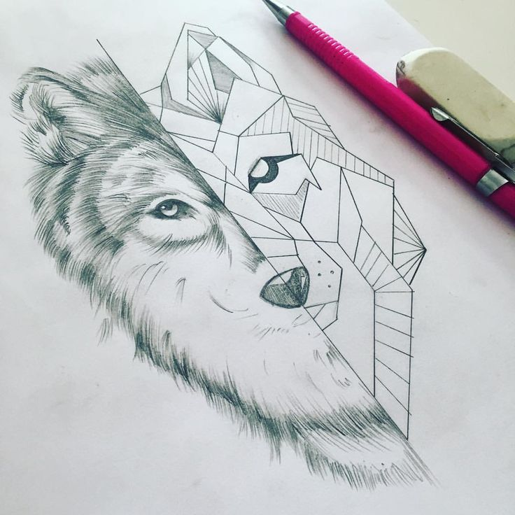Image result for geometric wolf illustration