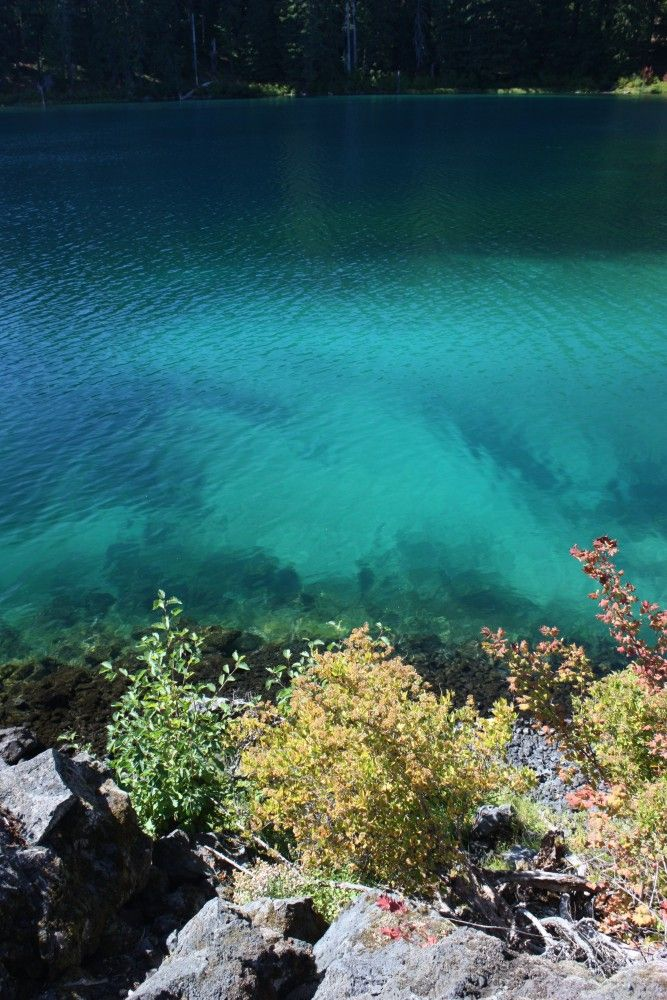 10 Best Summer Images On Pinterest Oregon Swimming Swimming Holes And Pacific Northwest