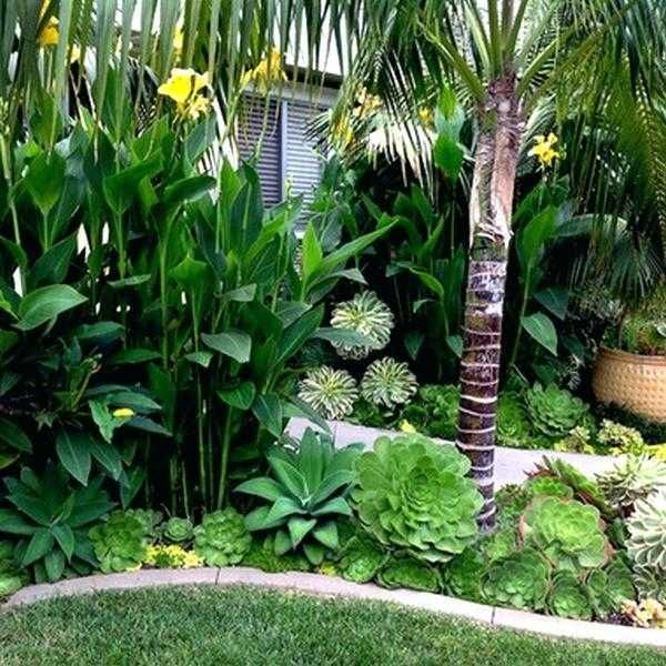 Tropical Landscaping Design Ideas