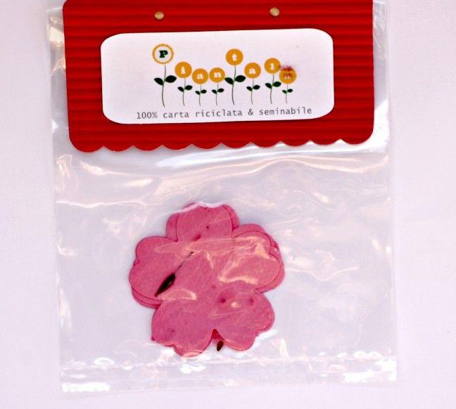 Fiore di ciliegio seminabile.seed paper