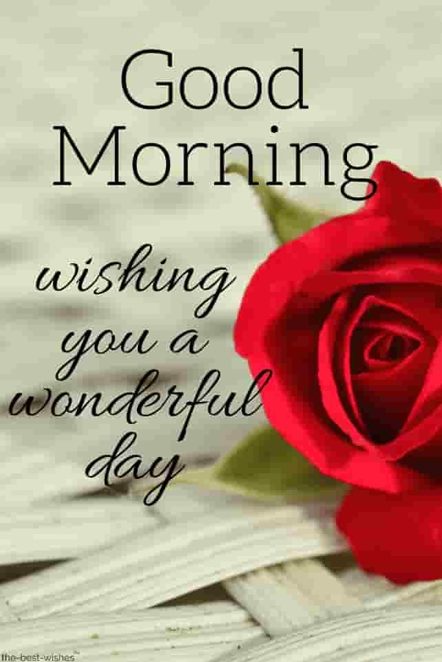 Pin on Good Morning Wishes