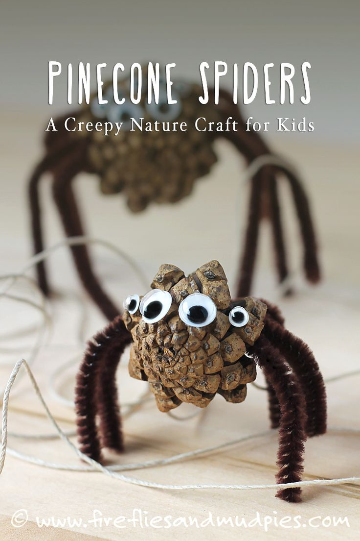 Pine Cone Spiders: A Creepy-Cute Nature Craft for Kids! | Fireflies and Mud Pies - more at megacutie.co.uk