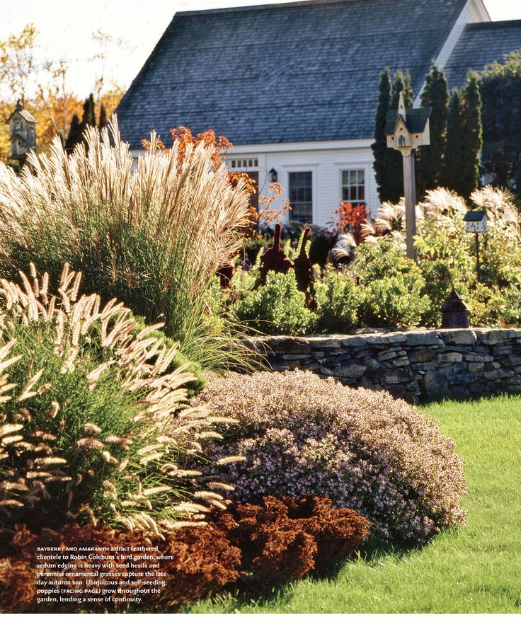 Gorgeous front yard in Charlotte, VT using evergreen perennial grasses and shrubs - it must look so amazing in winter too!  Design New England - July/August 2011 issue