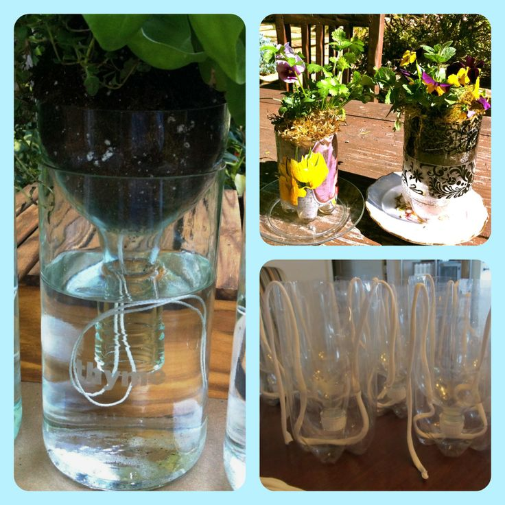 Self Watering Plant Containers Pictures Show Two