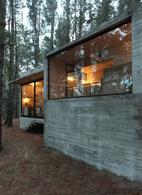 Incredible Glass And Concrete House In The Forest