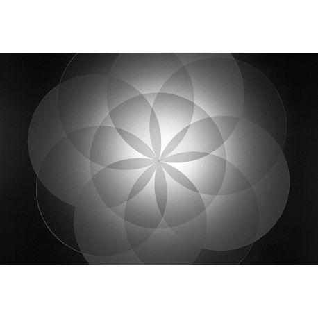 Obraz na płótnie - Abstrakcyjne koła - dostępne w rozmiarach 40x26, 60x40, 70x45, 90x60, 120x80, 150x100 #fedkolor #obrazzezdjęcia #obraznapłótnie #czarnobiałe #blackwhite #abstrakcja #sztuka #art #dekoracje #ozdoby #naścianę #dopokoju #twojezdjęcie #diy #pomysły #wnętrza