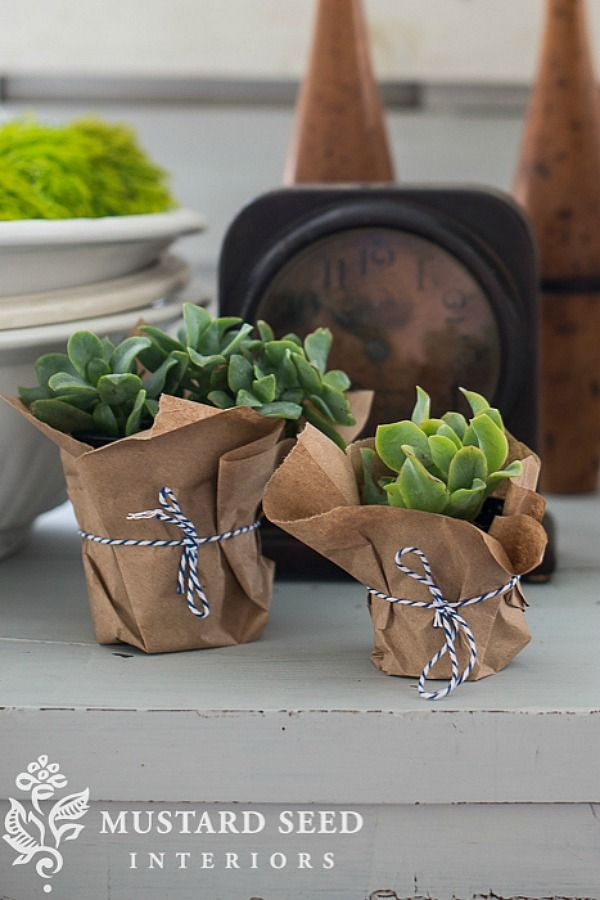 wrap plant pots with brown paper and tie with baker u0026 39 s twine