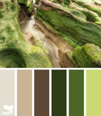 this inspires lots of woodsy ideas! This earthy, organic, natural, moss and bark color palette.