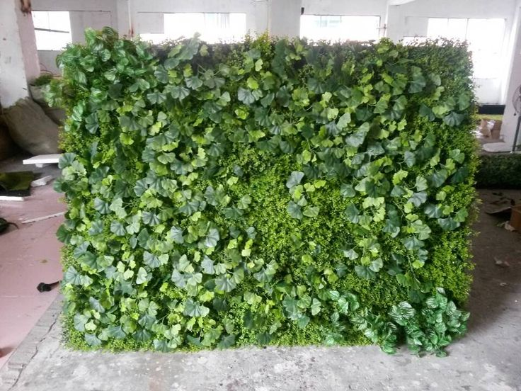 1000 images about vertical gardening on pinterest green for Wall plants outdoor