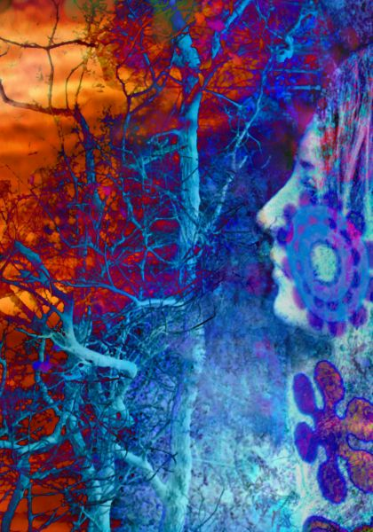 Fawn Gallery - A One exhibition Fine Art photographic print Concept #11