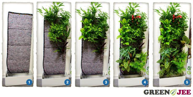 Mur Végétal / Green Wall - 'Pourquoi pas lui ajouter une fontaine ou un aquarium..'