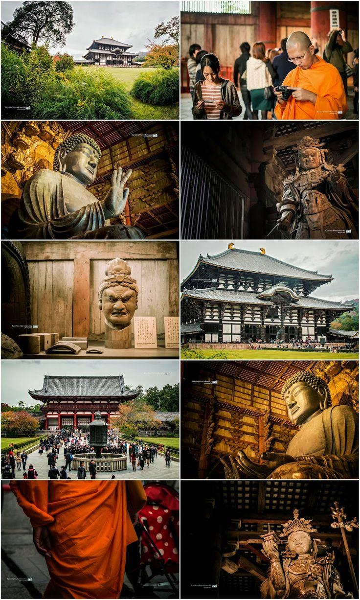 Todai-ji Temple - Kyoto - Japan - Todai-ji, Temple