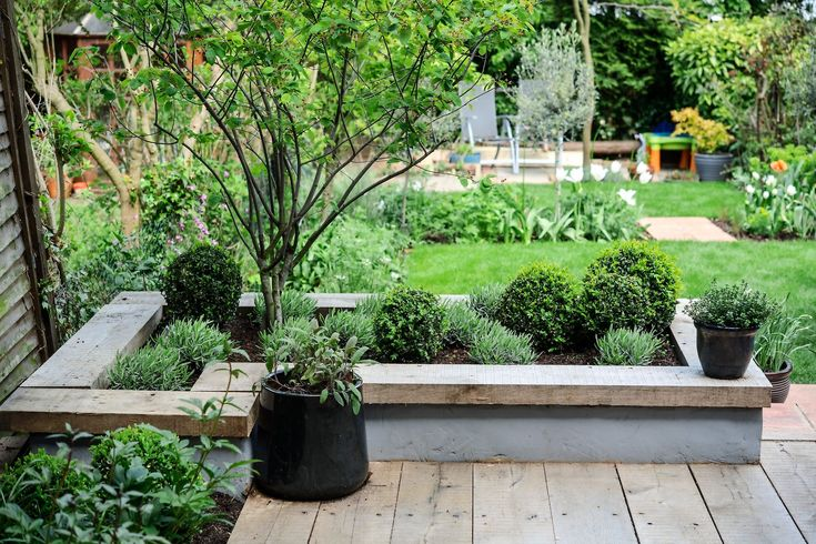 Give your garden a modern edge by creating a contemporary raised bed, by following our practical guide, from the experts at BBC Gardeners' World Magazine.