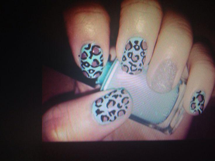 Leopard a la turquoise!