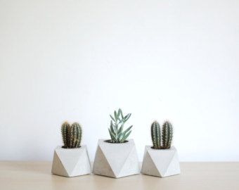 FACTO ERZ | geometrische konkrete saftigen Pflanzer Dies ist die neueste Kreation der FACTO Collection Sommer zu feiern. Seine geometrische Form ist wirklich einzigartig und es ändert sich abhängig von der Position. Es ist in drei verschiedenen Farben erhältlich: grau, weiß und schwarz Beton. Abmessung: 12 x 12 x 6 cm | 4,7 x 4,7 x 2,4 Zoll Die Vasen haben einen Kork-Schutz an der Unterseite um Kratzer zu vermeiden. Die Oberfläche ist mit ungiftigen Produkt zu machen, wasserdicht versieg...