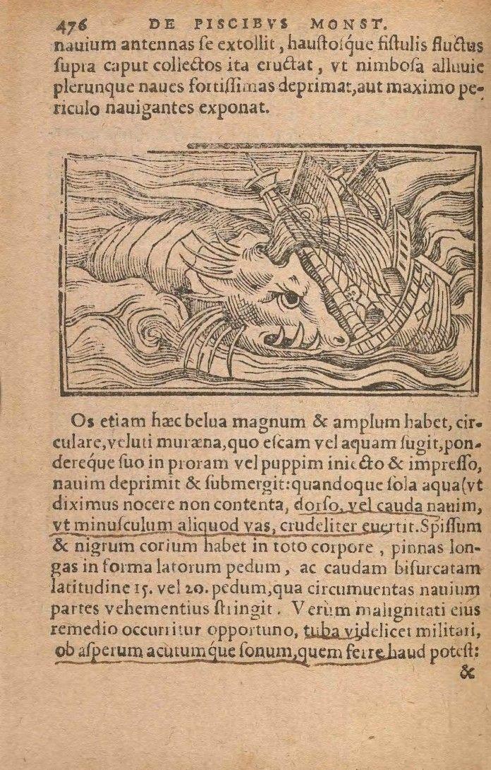 serpientes marinas con cabeza de caballo 2