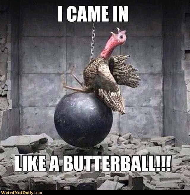 I Came In Like A Butterball thanksgiving thanksgiving pictures thanksgiving images thanksgiving memes thanksgiving meme thanksgiving facebook memes thanksgiving images for facebook thanksgiving facebook meme
